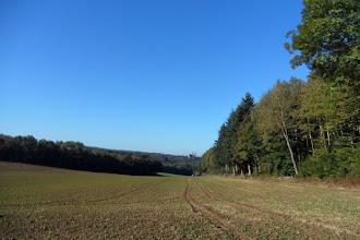 Photo: Vaste clairière qui offre un panorama vers le clocher de Maredret et les tours jumelles de Maredsous.
