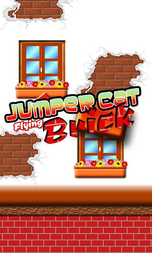 Jumper Cat - Flying Brick