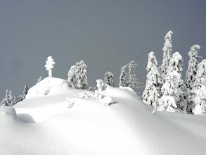 Photo: 04 Zwercheck: Gipfelfelsen meterhoch zugewachelt (25. Januar 2012)