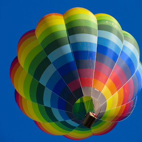 Rainbow Hot Air Balloon  by Nick Swan - Transportation Other ( hot air, sky, multi coloured, blue, balloon, rainbow,  )
