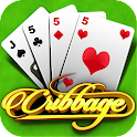 Cribbage icon
