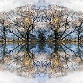 Digref 194 by Michael Moore - Digital Art Things