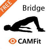 CAMFit Bridge 4 low back fat