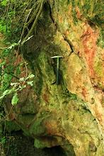 Photo: A falucska melletti kicsiny kőfejtő az alsó- és középső-jura korú, vörös színű Pusztakisfalui Mészkő Formációt tárja fel
