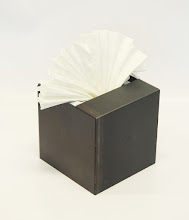 Photo: AH CHOO - 8H X 8W X 5D Hot Rolled Mild Steel, Facial Tissue, Angle View