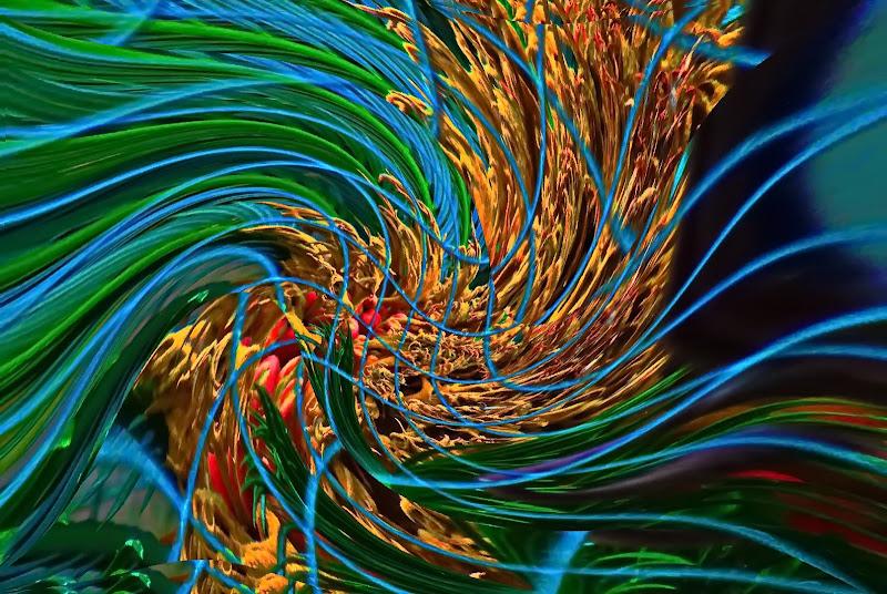 La musica che imprigiona il coronavirus di oceanina