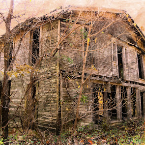 Pig Trail Hotel by Wesley Nesbitt - Buildings & Architecture Decaying & Abandoned ( rustic, art, painting, decay, architecture )