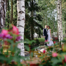 Wedding photographer Darya Miroshnikova (Akta). Photo of 06.11.2015
