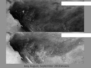 Photo: 3 month averages of cloudiness from MODIS using our technique (top) and NASA cloudmask product (bottom).  Note many artifacts in NASA product (flags as contaminated many surfaces that are due to agriculture)