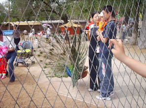 Photo: old photos from emakingir: Qiqihar zoo.