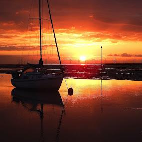 by Pat Regan - Transportation Boats (  )