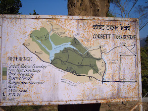 Photo: This was India's first national wildlife park named after Jim Corbett - a family friend