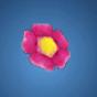 恨みの花飾り