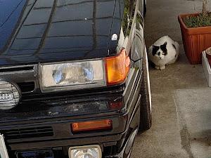 サニー FB12 1988 トラッドサニー  GA15E  マニュアルのカスタム事例画像 neko9981さんの2020年11月09日19:21の投稿