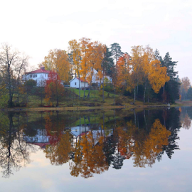 October day in Sweden  by Eva Larsson - Uncategorized All Uncategorized ( lake water reflection colorful home autumn )