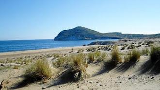 Imagen de archivo de la playa de Los Genoveses, en Cabo de Gata (Almería).