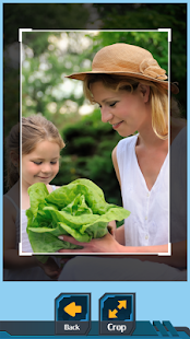 Vegetable Crop Photo - náhled
