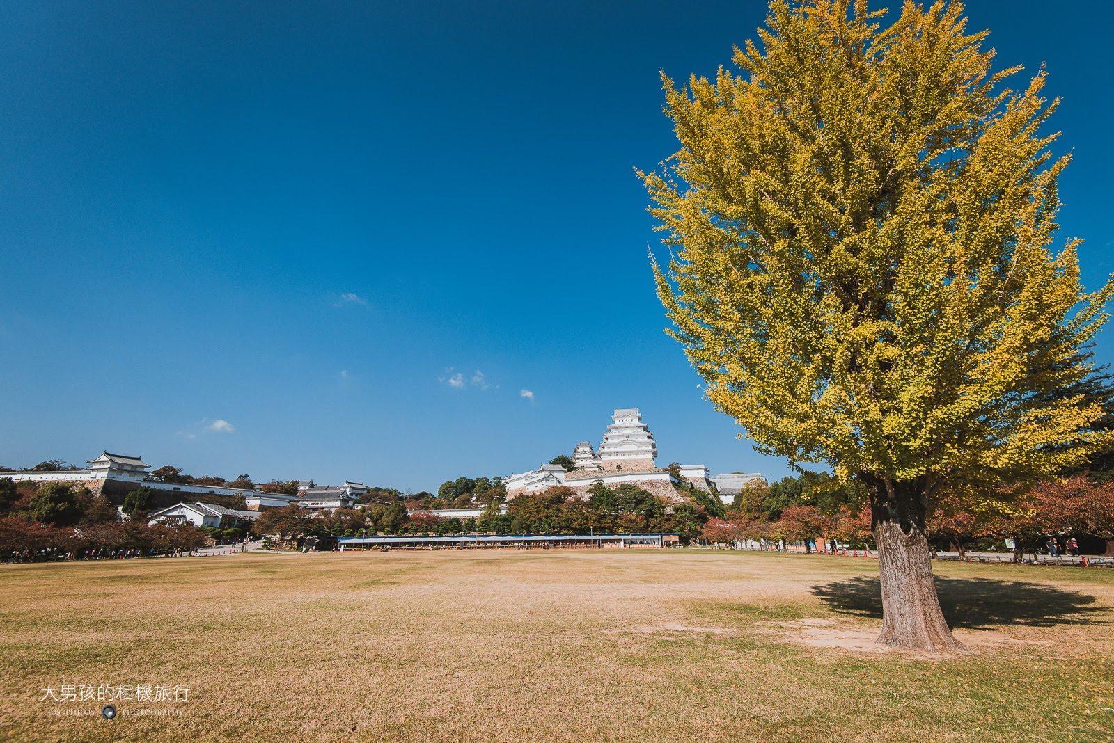 姬路城素有白鷺城之美稱,是前往神戶旅遊必訪的景點。