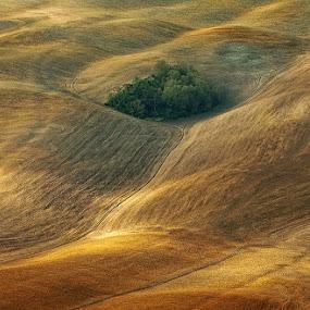 Island by Jure Kravanja - Landscapes Prairies, Meadows & Fields