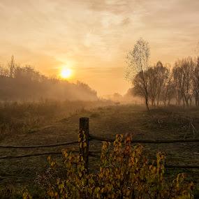 Sunrise and fog by Vanja Vidaković - Landscapes Sunsets & Sunrises