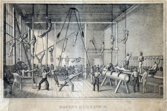 Lịch sử gym