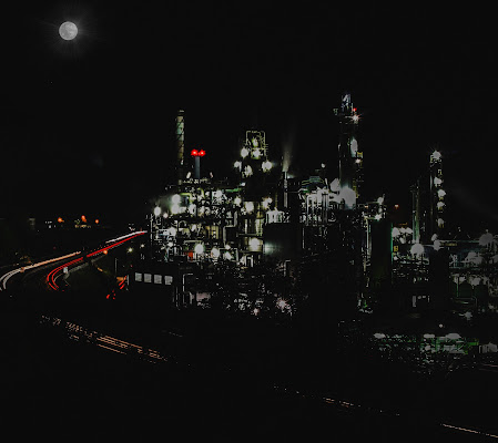 Bagliori nella notte di Merlograziano