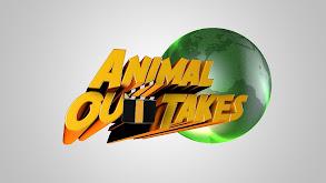 Animal Outtakes thumbnail