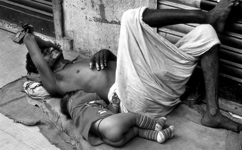 Povera siesta di leorol