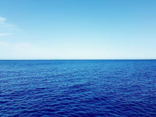 blu come il mare di Claudio Marchionne