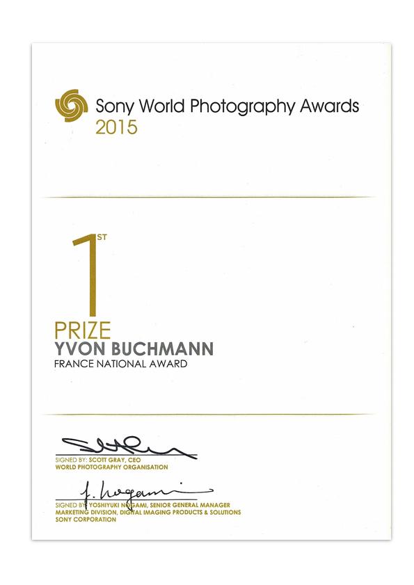 Sony-Award.jpg