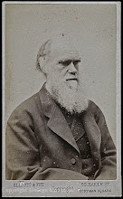 Photo: Charles Darwin in ?, from a carte de visite. Photographer: Elliott & Fry. Copyright of image: G. W. Beccaloni