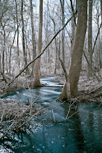 Photo: Frozen Creek - Infrared & color swapped