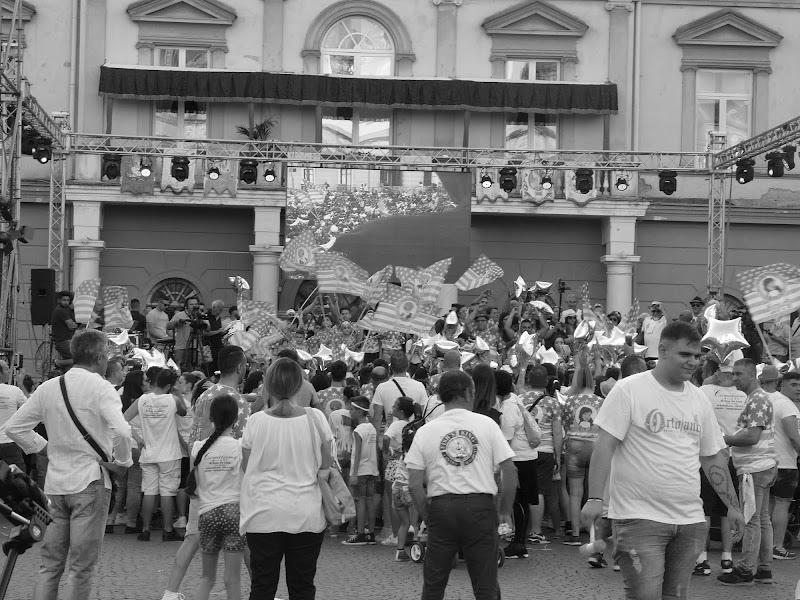 Il sabato dei comitati a Nola. di Mario Romano