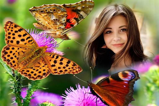 Butterfly Photo Frame app (apk) free download for Android/PC/Windows screenshot
