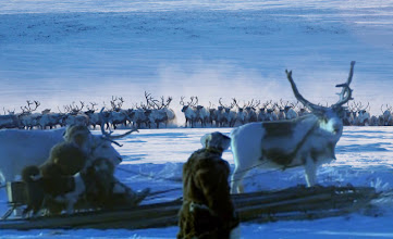 Photo: Siberian Chukchi: Journey of Man - PBS - National Geographic Image: digital adaptive by http://evolution-involution.org Source: http://news.nationalgeographic.com/news/2002/12/photogalleries/journey_of_man/index.html  Review: http://maya-gaia.angelfire.com/journey_of_man.html