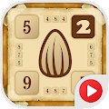 Sunny Seeds 2: Search pairs