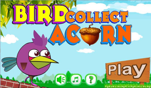 Bird Collect Acorn