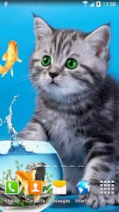 Cat Live Wallpaper 5