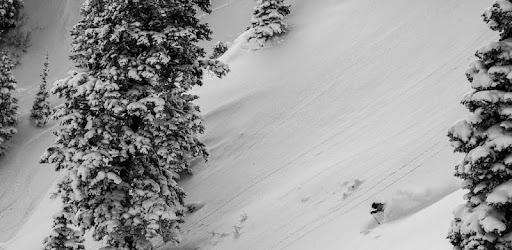 Snow Forecasts & Ski Reports