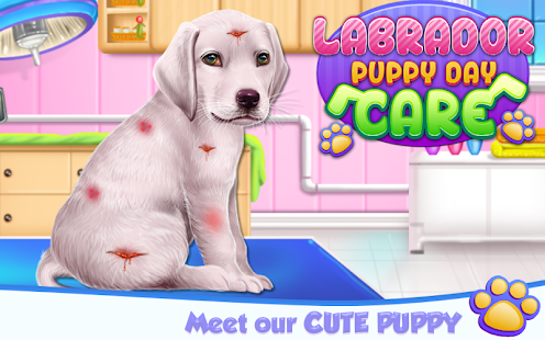 Labrador Puppy Day Care - náhled