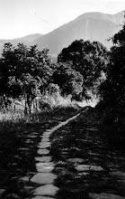 Photo: Caminho do Ouro, principal ligação entre Rio de Janeiro e Minas Gerais. Utilizada por tropeiros e viajantes desde o século XVIII