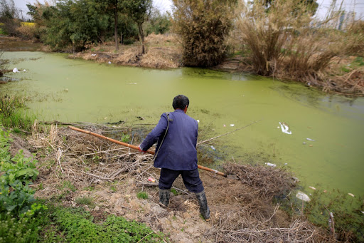 China targets farming curbs in bid to tackle water pollution