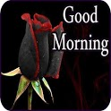 Good Morning Messages & Images with Flowers Roses icon