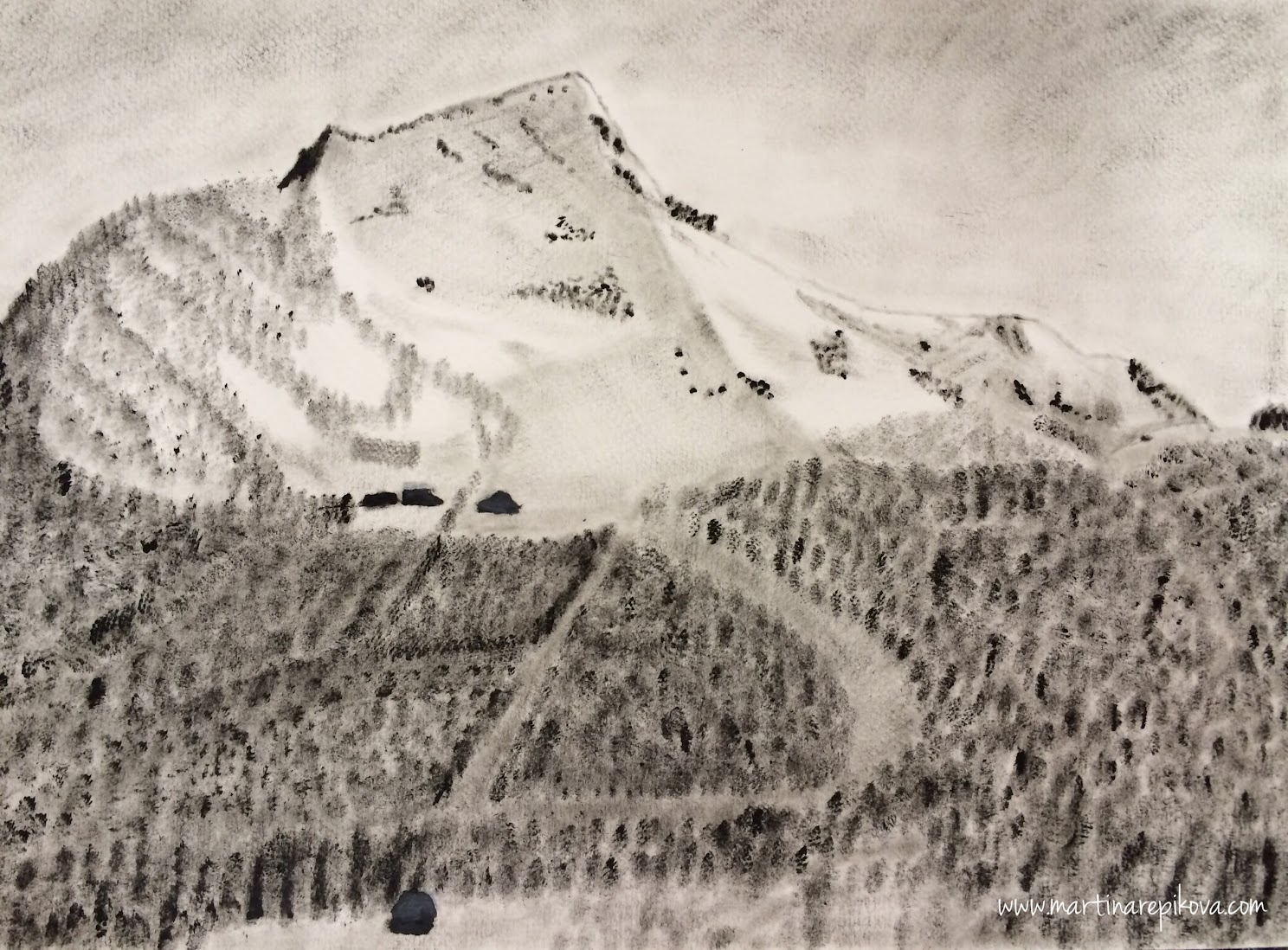A mountain (Dry Brush painting)