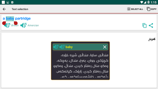 SardamDict Pro 6.5 screenshots 13