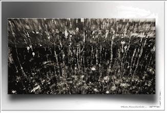 Foto: 2012 01 30 - R 11 09 09 016 - P 153 - am Bach