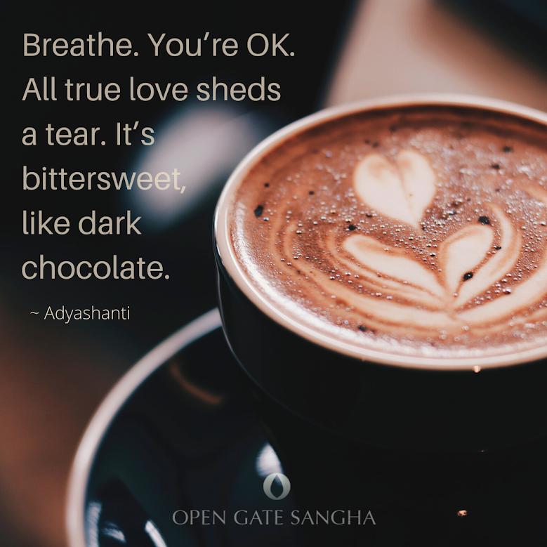 "PRP-Breathe. You're OK. All true love sheds a tear. It's bittersweet, like dark chocolate. ~ Adyashanti ""Fierce Love"" Self-Guided Course"