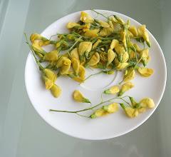 Photo: Cowslip flowers used in food.