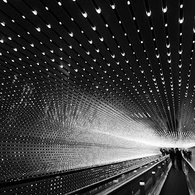 Moving walkway in Washington DC by Anna Stephens - Buildings & Architecture Other Interior ( black & white, walkway, moving walkway )