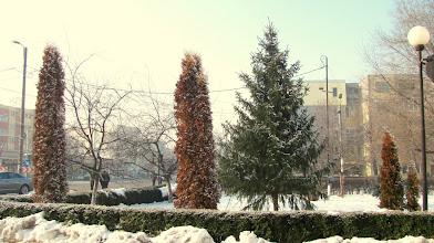 Photo: Parcul Bisericii din Oprisani III - (2012.01.02)